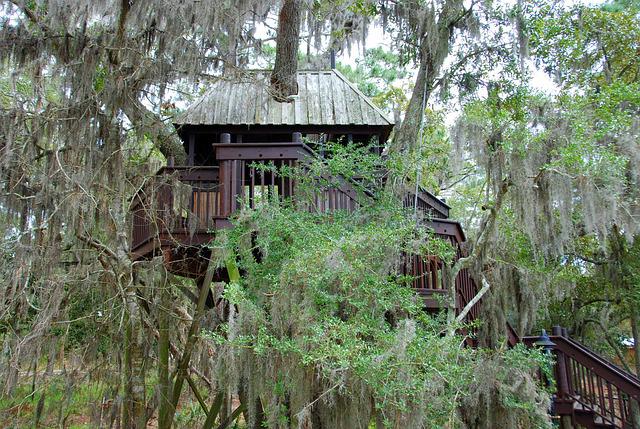 cabane tout confort dans les arbres